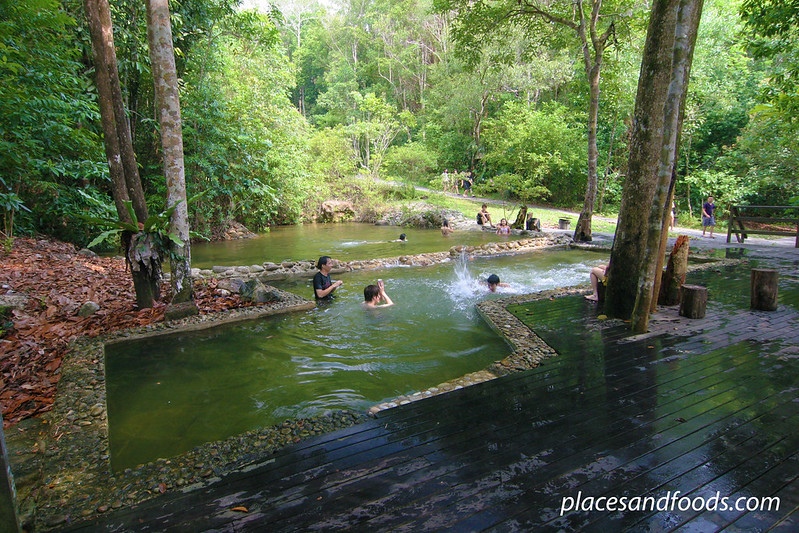 permai rainforest swimming pool in the forest