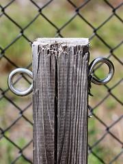 Happy Fence Friday!!!!