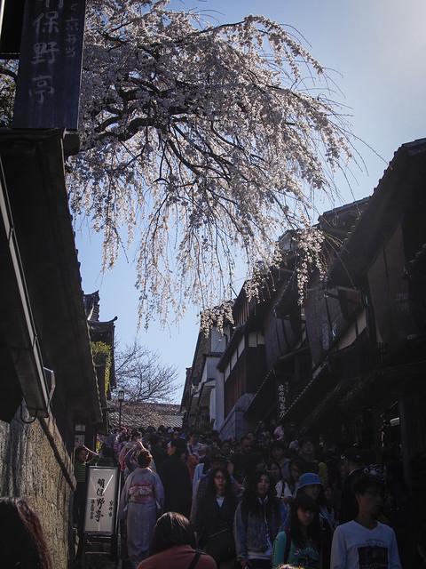 Sakura at Sannenzaka Kyoto