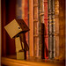 Danbo the librarian by ' SoeM '