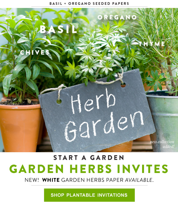 Garden Herb Seeded Paper