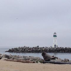 Santa Cruz Harbor - Walton Lighthouse