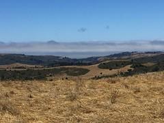 View from my truck #pacificocean #california #engineeringlife #roadwork #mrosd