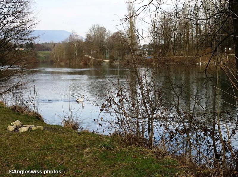 River Aar