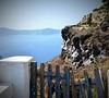 Reja Santorini