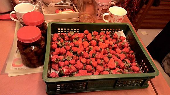 2015_0324Strawberry