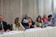 Reunião do Pleno do Fórum Nacional de Educação (FNE) - 24/03