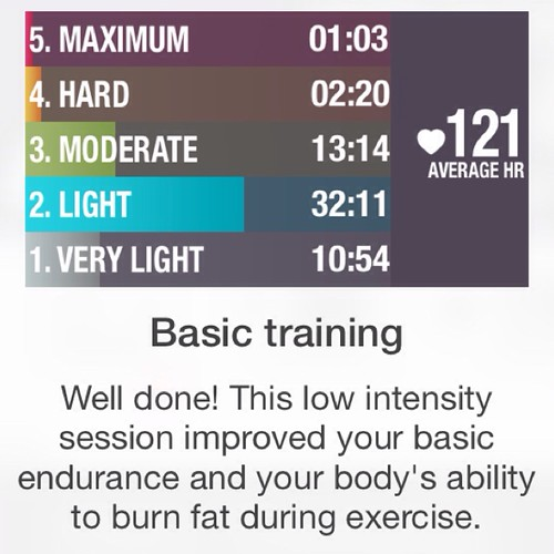 Wii fit workout stats