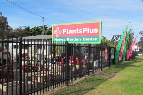 A business manager role with responsibility for growing a network of Plants Plus stores