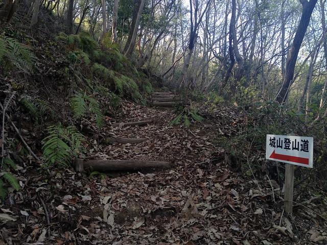 古城山 登山道 丸太階段