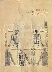08 Vesalius feuillet