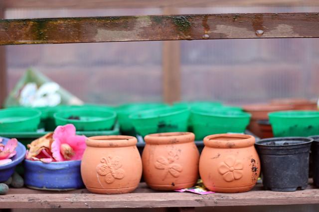 #naturallydyedwardrobe Dye Garden