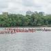 DC Dragon Boat Races