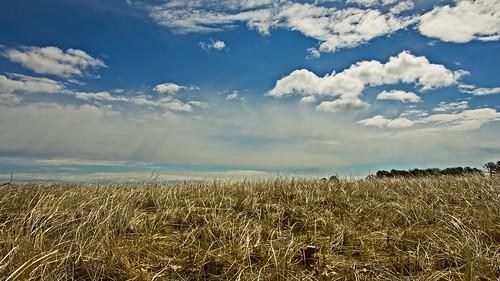 morning sky grass clouds spring maine kennebunk parsonsbeach