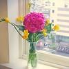 早上又衝了花市,拿訂好的素心蘭,順手帶了一枝繡球花,清新淡雅的插在辦公室,雨天也不那麼憂鬱了:)  #weck