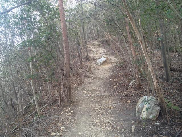 鳩吹山 登山道