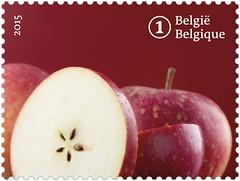13 FRUITS OUBLIÉS timbre 10reinette