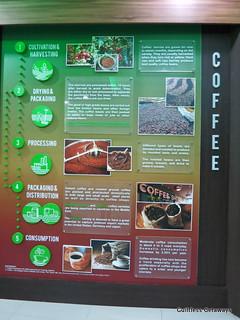 organic-agriculture-manila.jpg