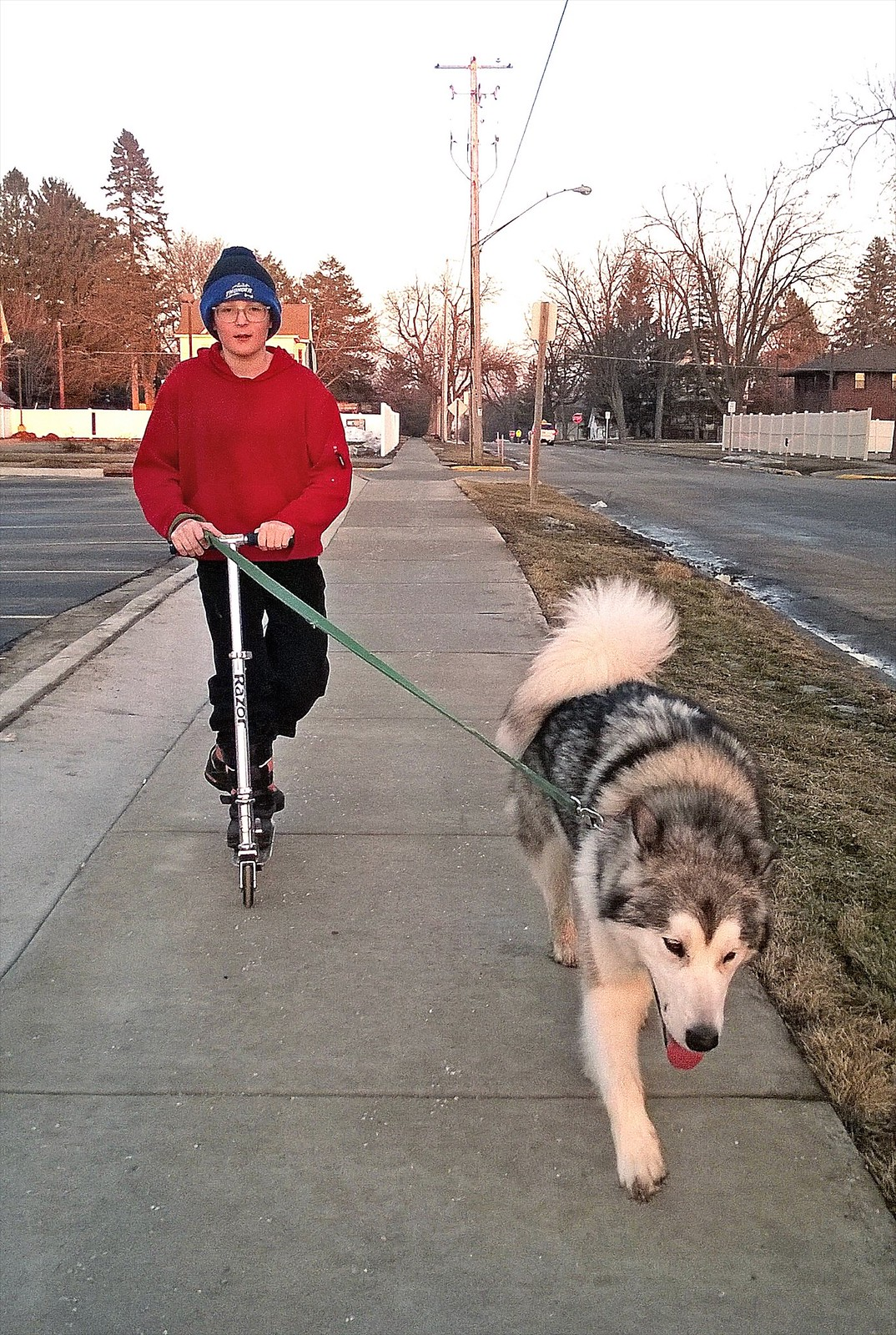 day 3902 - 68/365. odin scootering and dog walking.