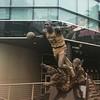 Magic Johnson... A próxima será do Kobe??? by rodrigosalvetti
