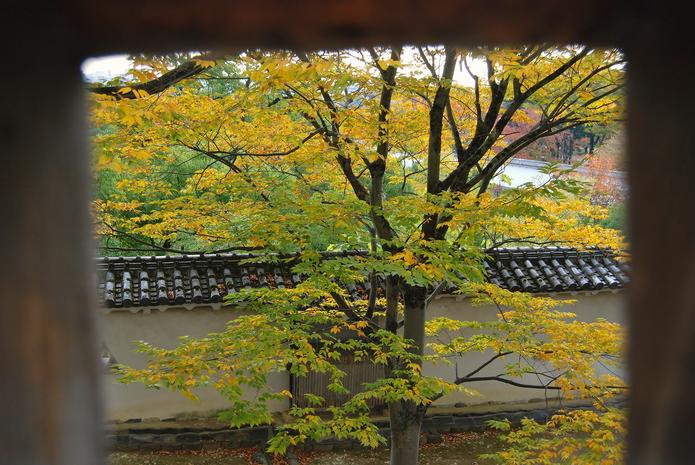 姬路城 日本第一名城 世界文化遺產 好古園 姬路城的美麗後花園   林氏璧和美狐團三狐的小天地
