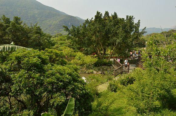 內雙溪自然中心26