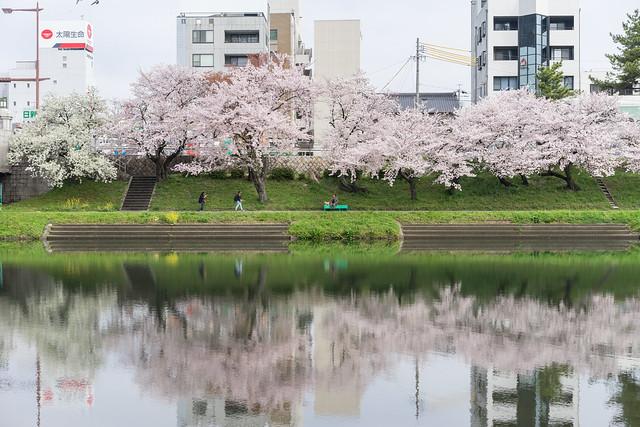 Okazaki_Sakura_101