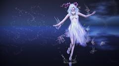 Fairy Step