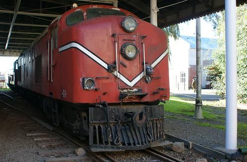 Ferrymead: Df Diesel No.1501 (c.1954)