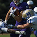 Amherst Football Wins Home Opener Against Hamilton