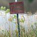 Watson Lake_MIN 329_12