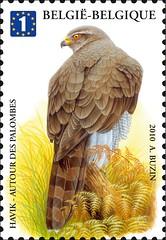 12 BUZIN 25 timbree