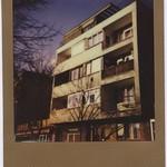 * --- Polaroid Week, Day  4/2