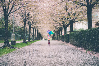 Rainy but Beautiful Spring in Vancouver