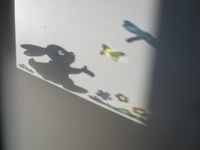Shadow bunny
