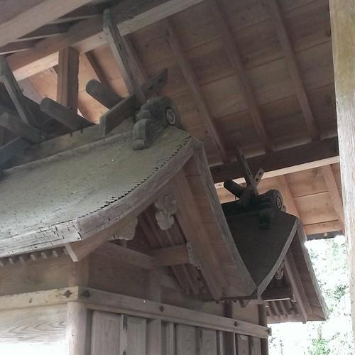 須佐神社内の三穂社。本殿のとんがり部分を見ればわかる通り男女で祀られている