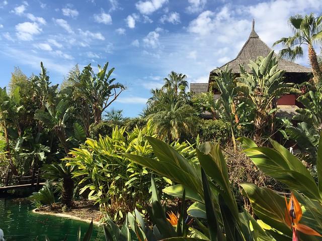 Paisajes del Asia Gardens Hotel