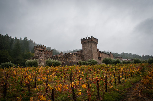 california autumn castle fall vineyard nikon colorful unitedstates calistoga foggy overcast winery rainy napavalley nikkor grapevines lightrain sainthelena nikond300
