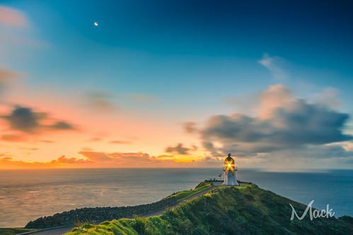 newzealand northland capereinga