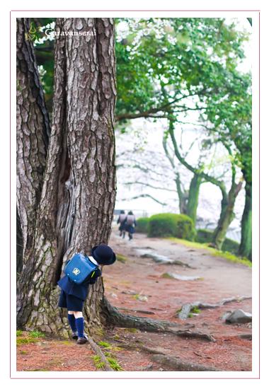 桜写真,家族写真,子供写真,ファミリーフォト,名古屋城,名古屋市北区,自然,ナチュラル,全データ