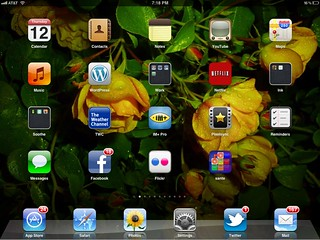 Sante iPad Game: Dock Icon