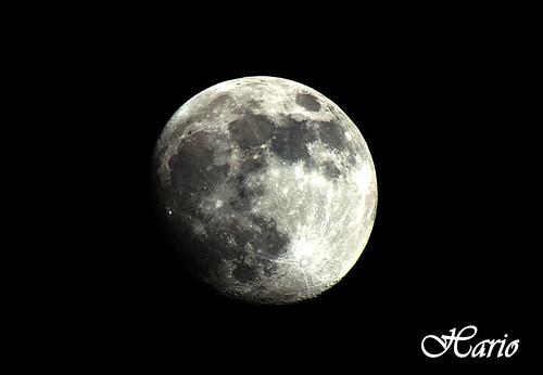 moon (Hario)