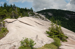 Welch Mountain and Dickey Mountain Loop trail, White Mountains, New Hampshire