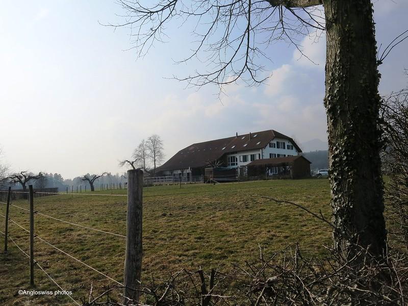 Stables Feldbrunnen