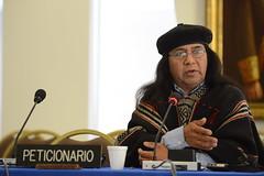 Chile: Industrias extractivas y pueblo Mapuche