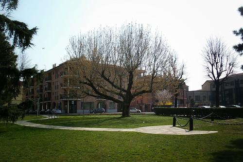 L'albero eroico della città di #Treviglio by Ylbert Durishti