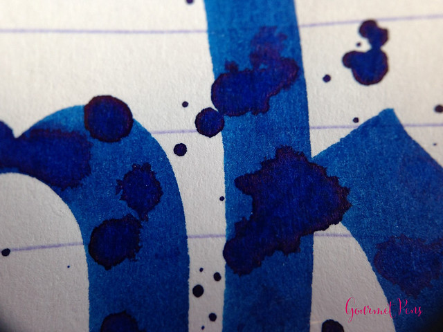 Ink Shot Review Sailor Bung Box Sapphire @bungbox (7)
