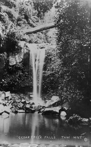 waterfall queensland statelibraryofqueensland mttamborine slq qanzac