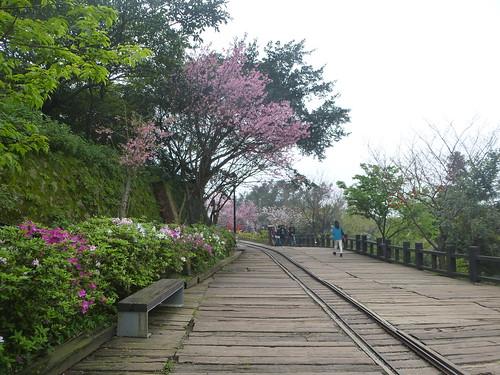 Ta-Taipei-Jinguashi (40)