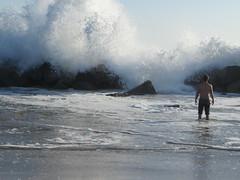 Venice Beach: SoCal Vacation